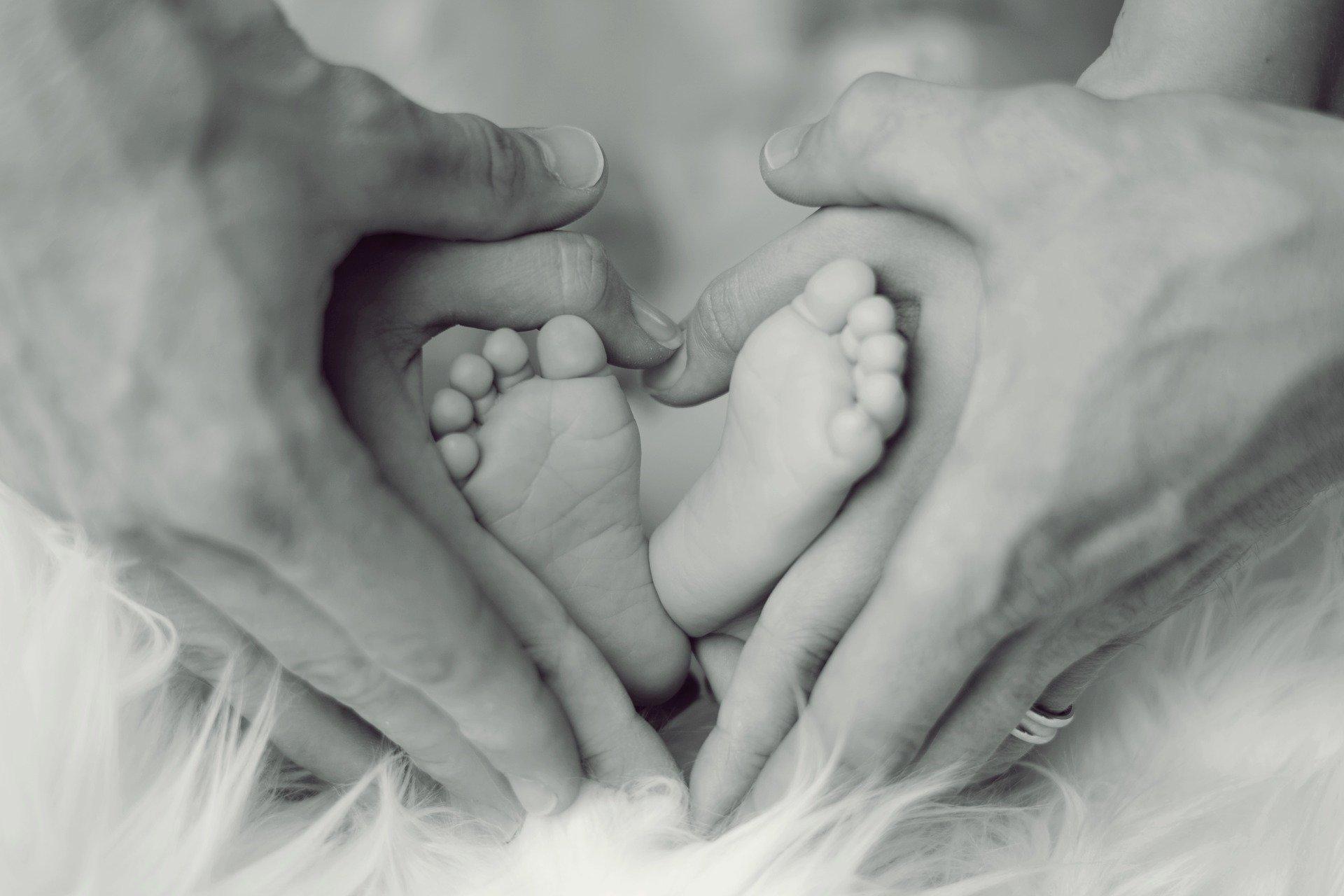 baby-2717347_1920